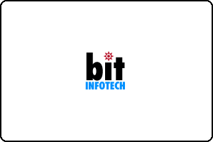 Logo Website Designing India Delhi bitinfotech